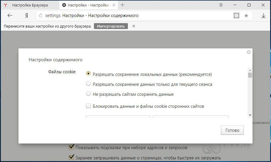 Включение cookies в Яндекс Браузере - шаг 3