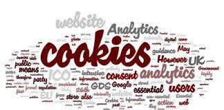 Что такое файлы cookies – разбираемся в деталях