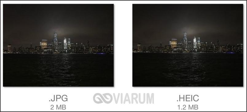 Сравнение качества фото в форматах JPG и HEIC