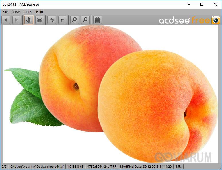 Файл TIFF в окне программы ACDSee Free