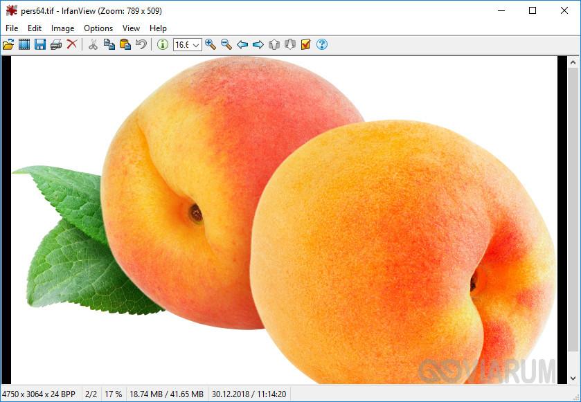 Файл TIFF в приложении IrfanView