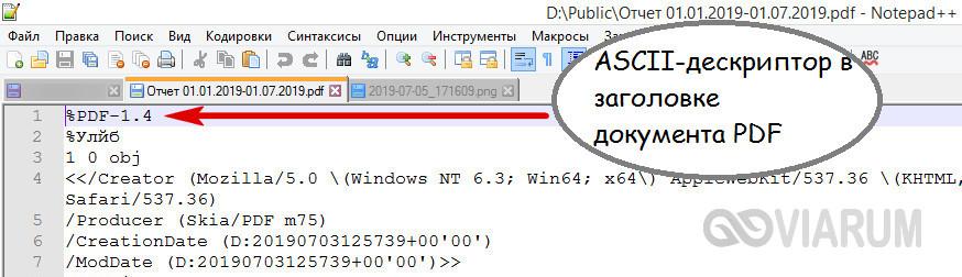 ASCII-дескриптор файла