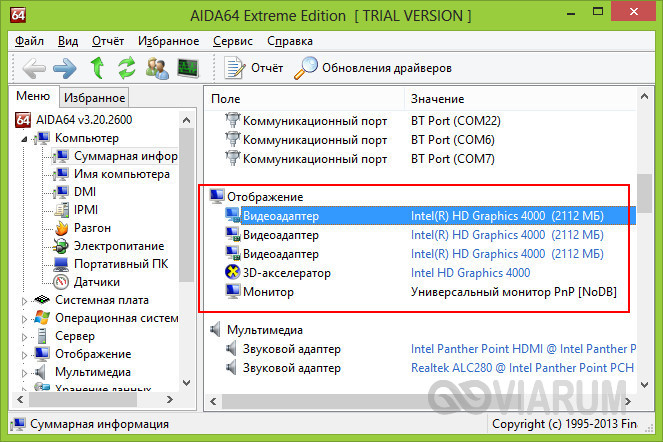 Видеоадаптер в программе AIDA64