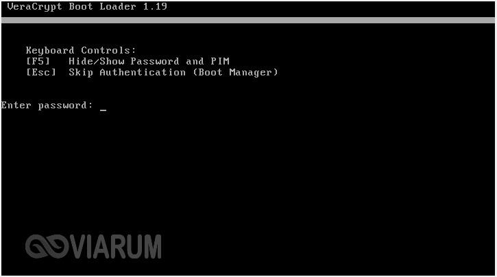 Вводим пароль и PIM в окне загрузчика